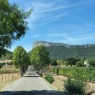 Propriété viticole Montpellier • 1 p.