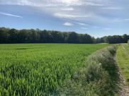 Terrain Pacy sur Eure