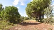 Terrain La Palme • 1 179 m² environ