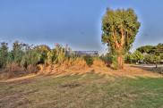 Terrain Bormes les Mimosas • 1 014m²