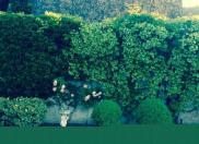 Villa Le Beausset • 350m² • 10 p.