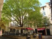 Appartement Montpellier • 49 m² environ • 2 pièces