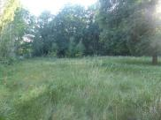Terrain Negrepelisse • 1 250 m² environ