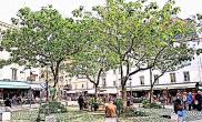 Local commercial Paris 05 • 150m²