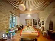 Maison La Fare les Oliviers • 500m² • 15 p.