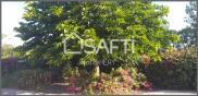 Maison Bois de Cene • 145m² • 5 p.
