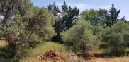 Terrain Cotignac • 889m²