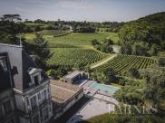 Propriété viticole Bordeaux • 500m² • 11 p.