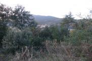 Terrain Amelie les Bains Palalda