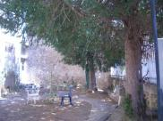 Propriété Camplong d Aude • 300 m² environ • 13 pièces