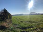 Terrain La Neuville