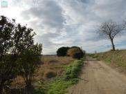 Terrain Torreilles • 4 000m²