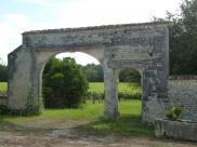 Propriété viticole Verrieres • 250m² • 6 p.