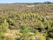 Terrain Le Beausset • 9 070 m² environ