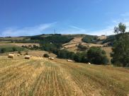 Terrain Valsonne