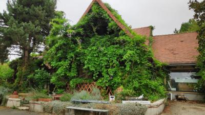 Vente maison Levroux • <span class='offer-area-number'>256</span> m² environ • <span class='offer-rooms-number'>7</span> pièces