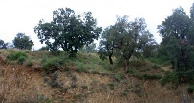 Vente terrain Collioure • <span class='offer-area-number'>580</span> m² environ