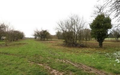 Vente terrain St Florent sur Cher • <span class='offer-area-number'>4 849</span> m² environ