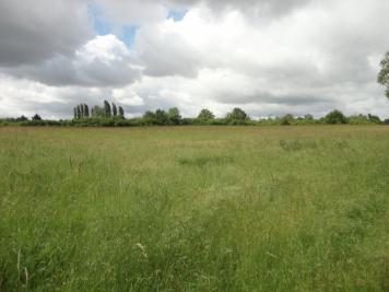 Vente terrain St Georges sur la Pree • <span class='offer-area-number'>11 380</span> m² environ