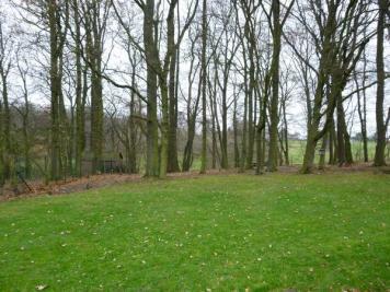 Vente terrain Neuville en Ferrain