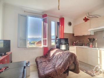 Vente appartement Ceret • <span class='offer-area-number'>39</span> m² environ • <span class='offer-rooms-number'>2</span> pièces