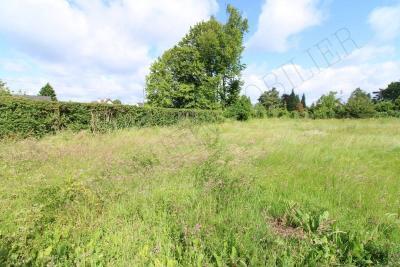 Vente terrain Ste Genevieve