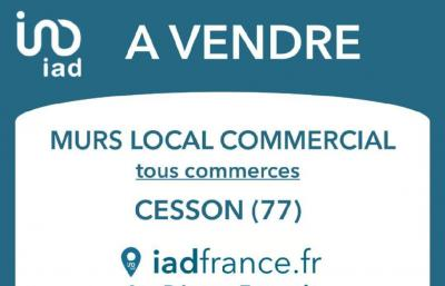Vente commerce Cesson • <span class='offer-area-number'>165</span> m² environ