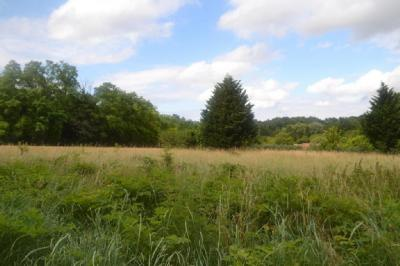 Achat terrain Fontainebleau • <span class='offer-area-number'>751</span> m² environ