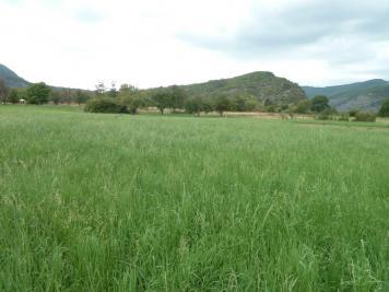 Vente terrain La Javie • <span class='offer-area-number'>5 544</span> m² environ