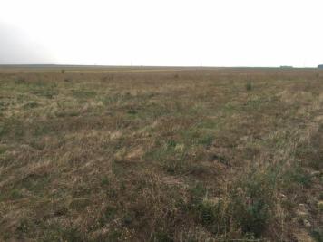 Vente terrain Tousson • <span class='offer-area-number'>1 080</span> m² environ