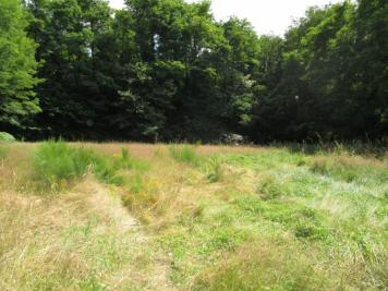 Vente terrain Vierzon • <span class='offer-area-number'>672</span> m² environ