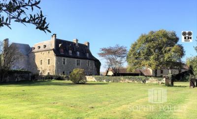 Vente château Orthez • <span class='offer-area-number'>513</span> m² environ • <span class='offer-rooms-number'>23</span> pièces