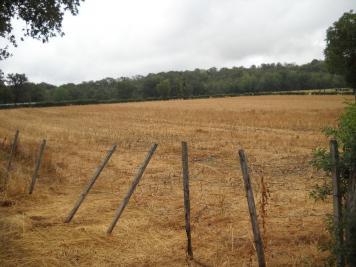 Vente terrain Estivareilles • <span class='offer-area-number'>18 218</span> m² environ